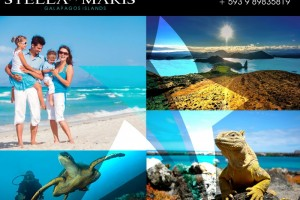 GALAPAGOS ISLANDS | A wonderful destiny is waiting for you